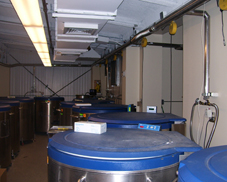 Cryogenic Freezer Farm
